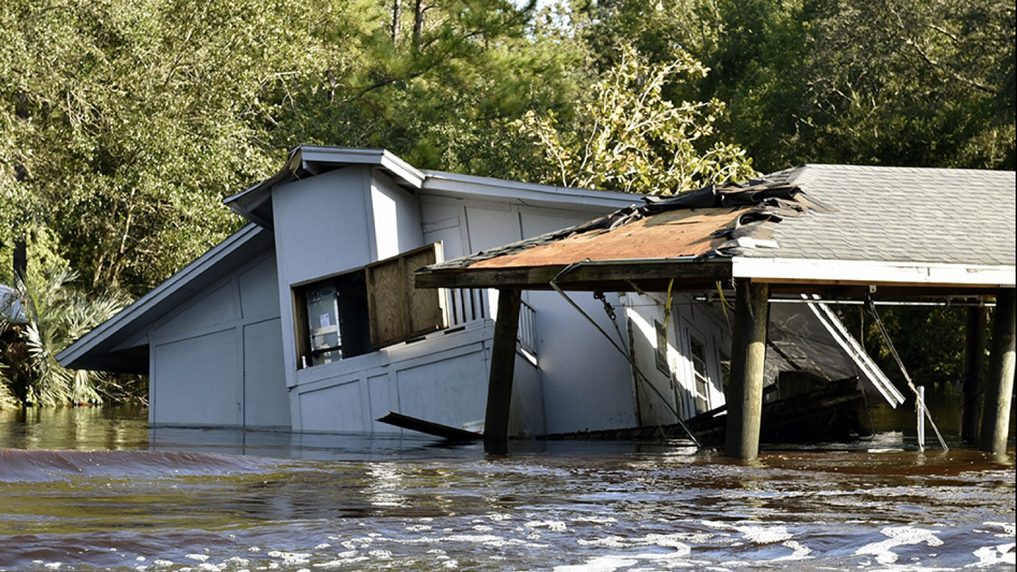 Damage after hurricane irma in Florida, September 2017. photo: Florida fish and wildlife, via flickr.